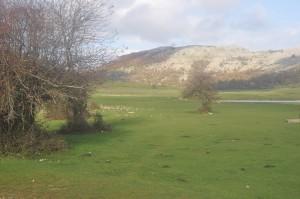 panorama del campo