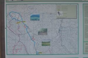piantina LH4