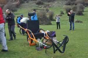 accoglienza portatore disabile